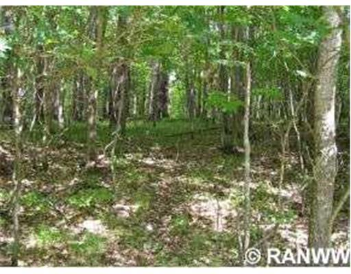 Land/Lot. Half-acre building lot, nicely wooded, at the end of the cul-de-sac. - Lot 66 Winter Green Way Danbury