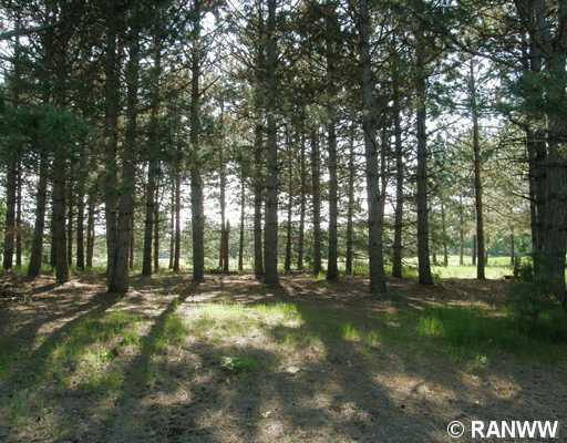 Land/Lot. View of lot from road. Elevation is slightly up from the paved road. - Lot 5 Meadow Green Trailway  Danbury
