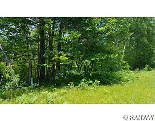 Land/Lot. Trail is available near this lot that will take you over to the clubhouse. - Lot 25 Half Moon Court Danbury
