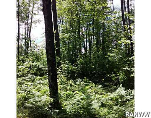 Land/Lot. Lot 38 Honey Tree is very private. Populated by large hardwoods. - Lot 38 Honey Tree Pass  Danbury