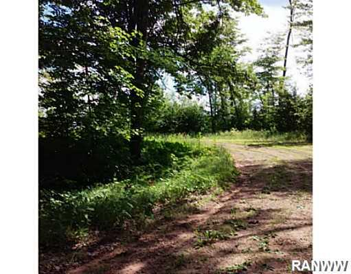 Land/Lot. View of the cul-de-sac. Lot is on the southwest side. - Lot 38 Honey Tree Pass  Danbury