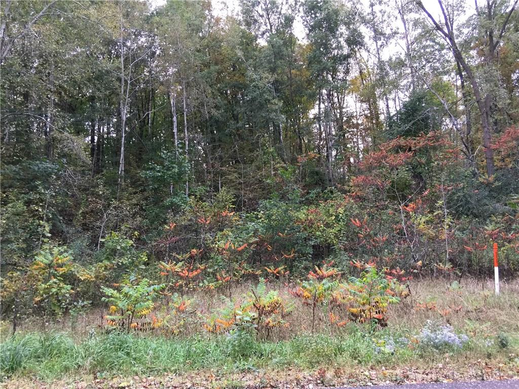 - 2486 (Lot1) Pierce Saint Croix Road Baldwin