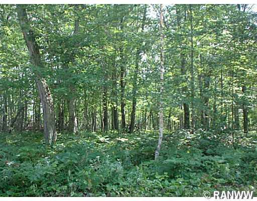 Lot 67 White Birch Ct (Silver Birch Addition) , Webster - MLS# 885742 - $3300.00