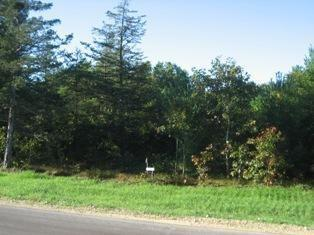- Lot 14 Black River Ridge Drive Melrose