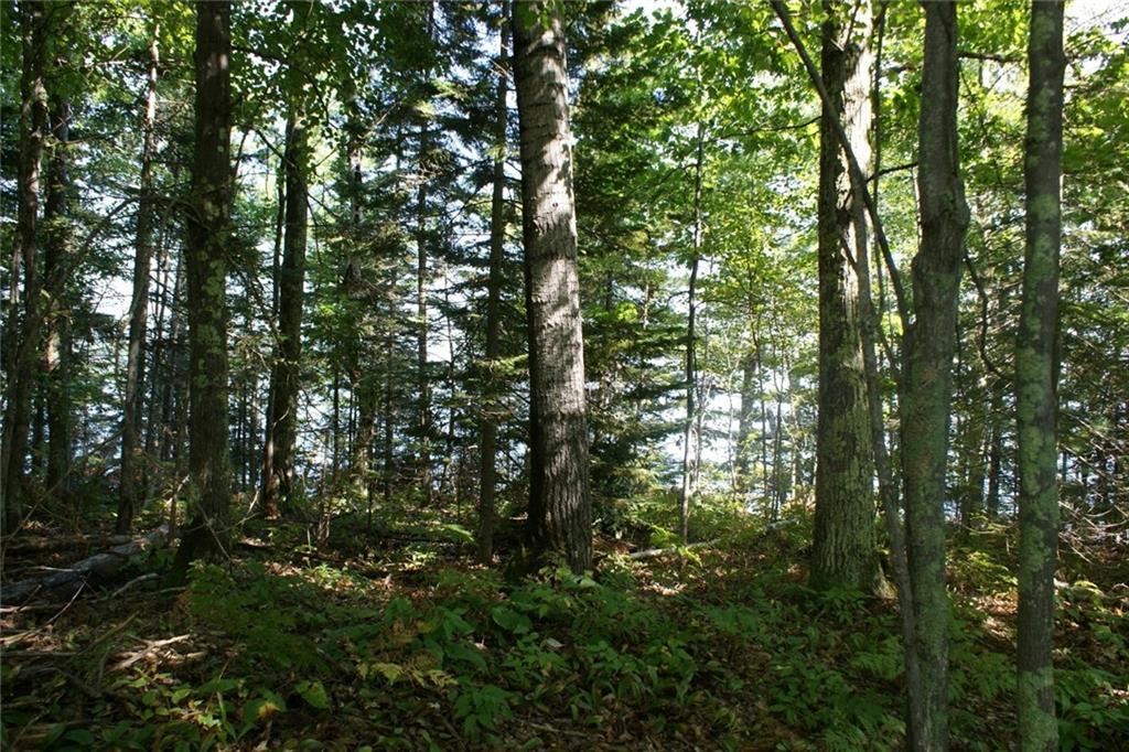 - 83050 Lot 1 State Hwy 13  Bayfield