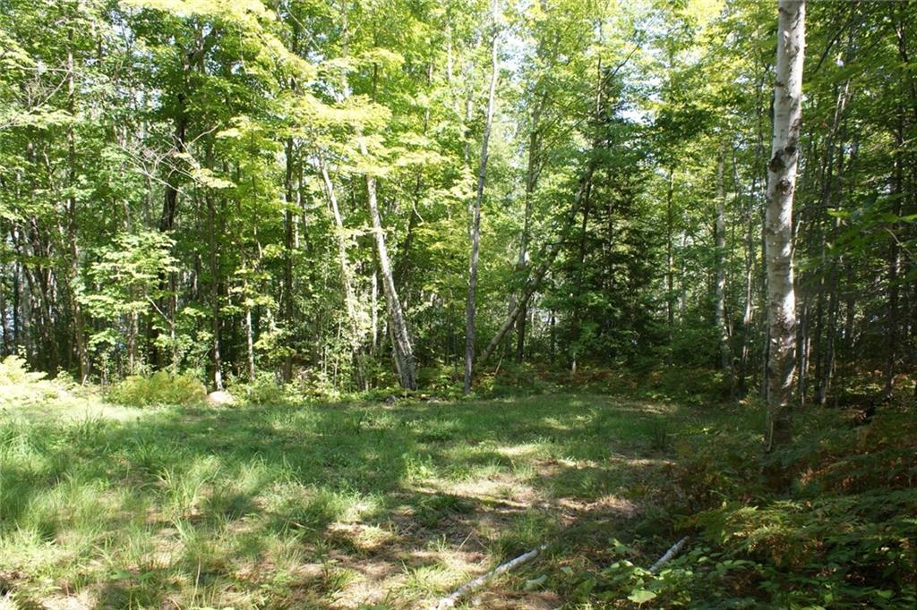 - 83050 Lot 3 State Hwy 13  Bayfield