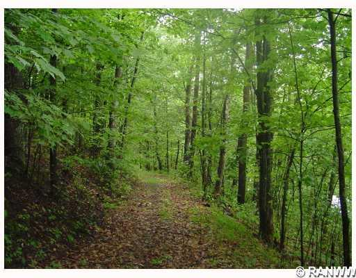 Other. Road access - Lot 2 Hwy H  Iron River
