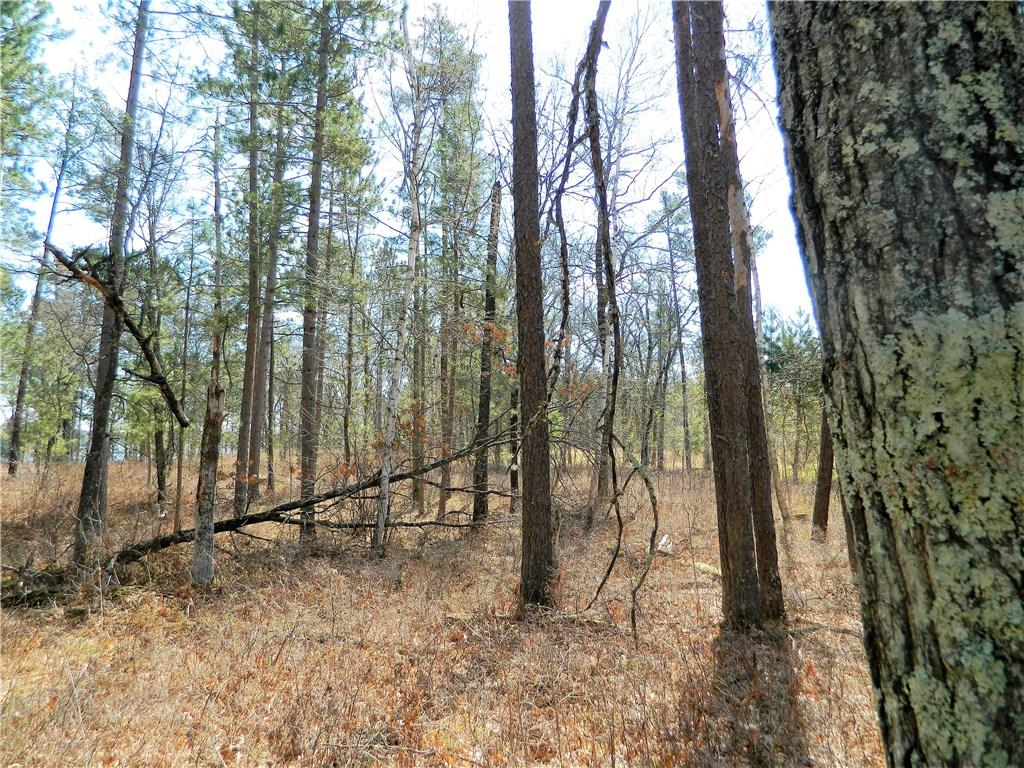 Land/Lot - Wooded .6 acre lot overlooking Bogey Lake in Voyager Village - Lot 6 Rainbow Court Danbury