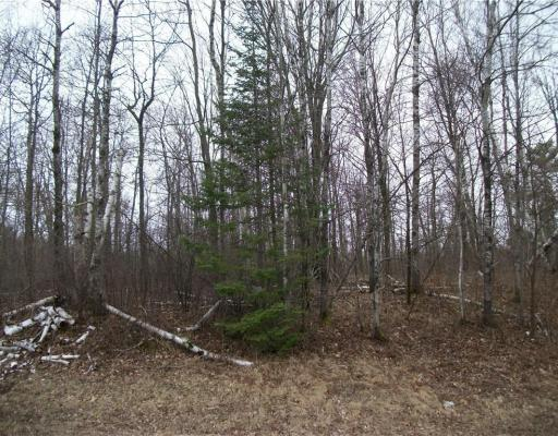 Lot 36 Loch Lomond , Birchwood - MLS# 1521105 - $8500.00
