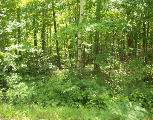 Lot 50 Allison , Birchwood - MLS# 1532797 - $4995.00