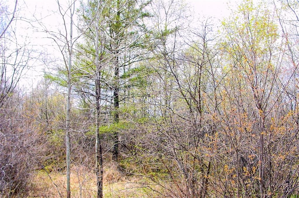 - 10 Acres on Park and Old 14 Roads Ladysmith