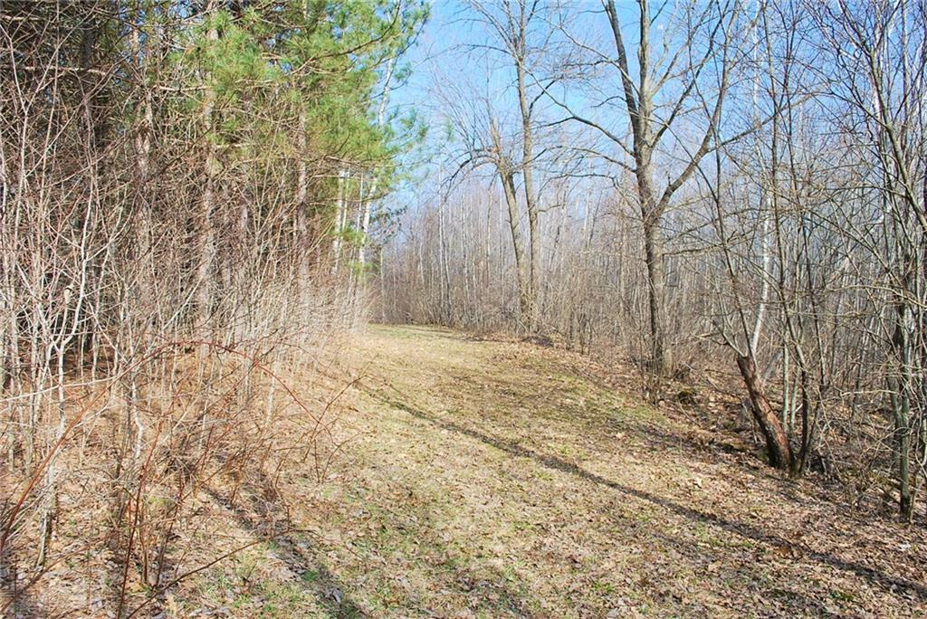 177393846-07.jpg - 10.1 Acres on 182nd St  Holcombe