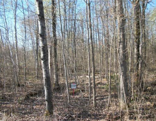 Lot 48 Cumberland Circle, Birchwood - MLS# 1541772 - $7500.00