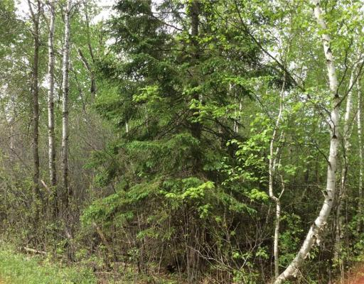Lot 15, Blk 25 Eden Ave. , Birchwood - MLS# 1540064 - $5500.00