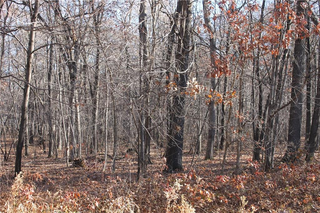 - Lot 12 33rd Street Elk Mound